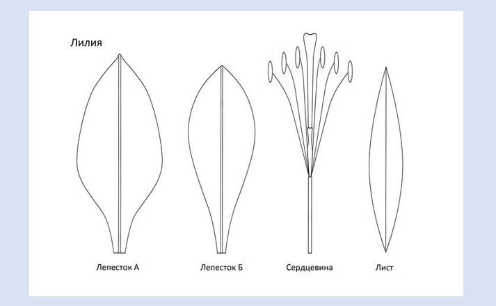 screenshot_2-10 Цветы из фоамирана пошагово. Как сделать цветы из фоамирана своими руками, маленькие, большие, ростовые цветы, полевые, розы. Картины из фоамирана своими руками. Фоамиран с Алиэкспресс