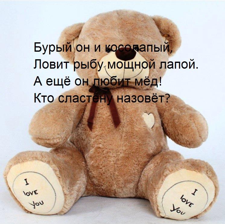 áîëüøîé áëþøåâûé ìåäâåäü êóïèòü