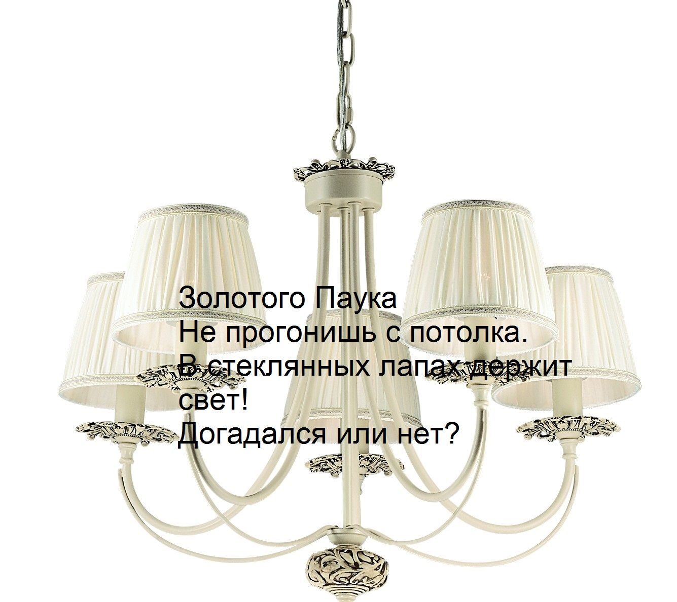favourite_1197-5p