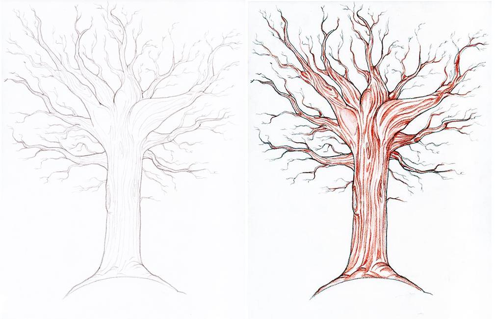 Дерево осенью картинка нарисованная карандашом