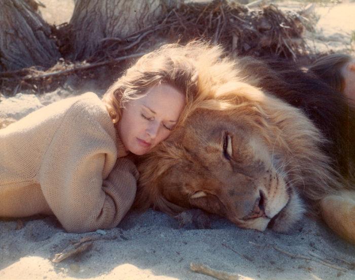 Женщина тигр всегда полна энтузиазма и с удовольствием включится в любую вашу интересную затею — только предложи!