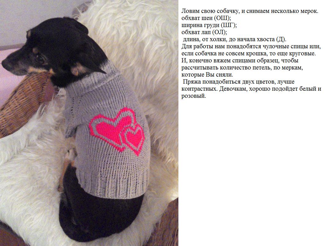 вязание для собак схемы схемы вязания для маленьких собак как