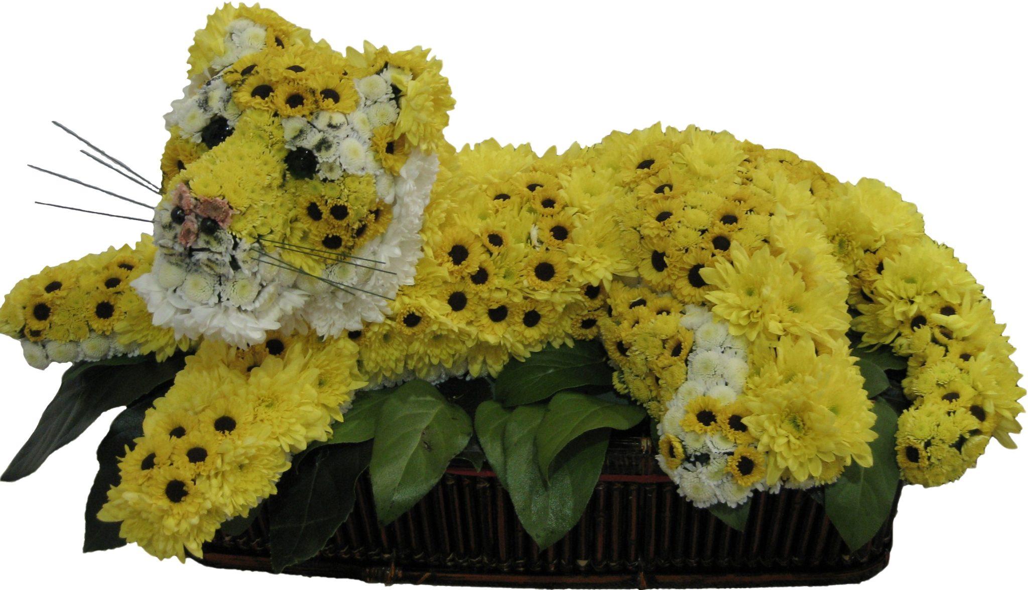 Букеты в виде животных цены, цветов адресу нижний