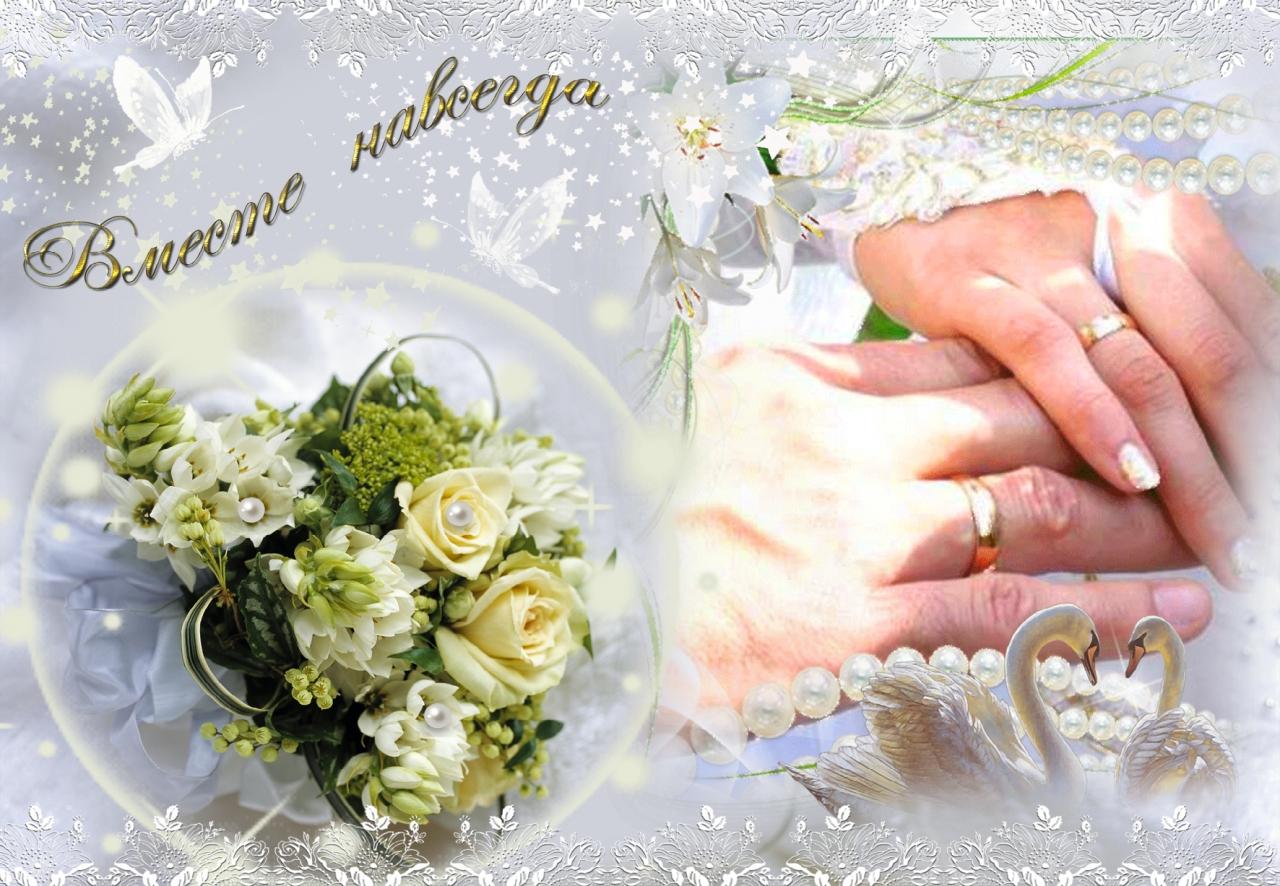 Фото поздравления на свадьбу пожелания, петергофа санкт-петербурге