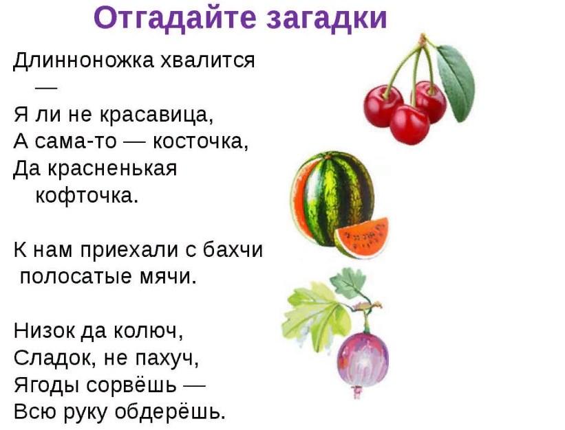 загадки с фруктами в картинках сложные