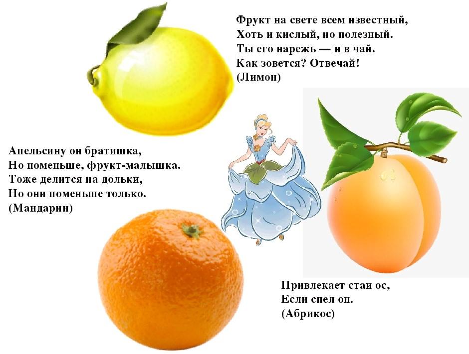 загадки с фруктами в картинках сложные леди