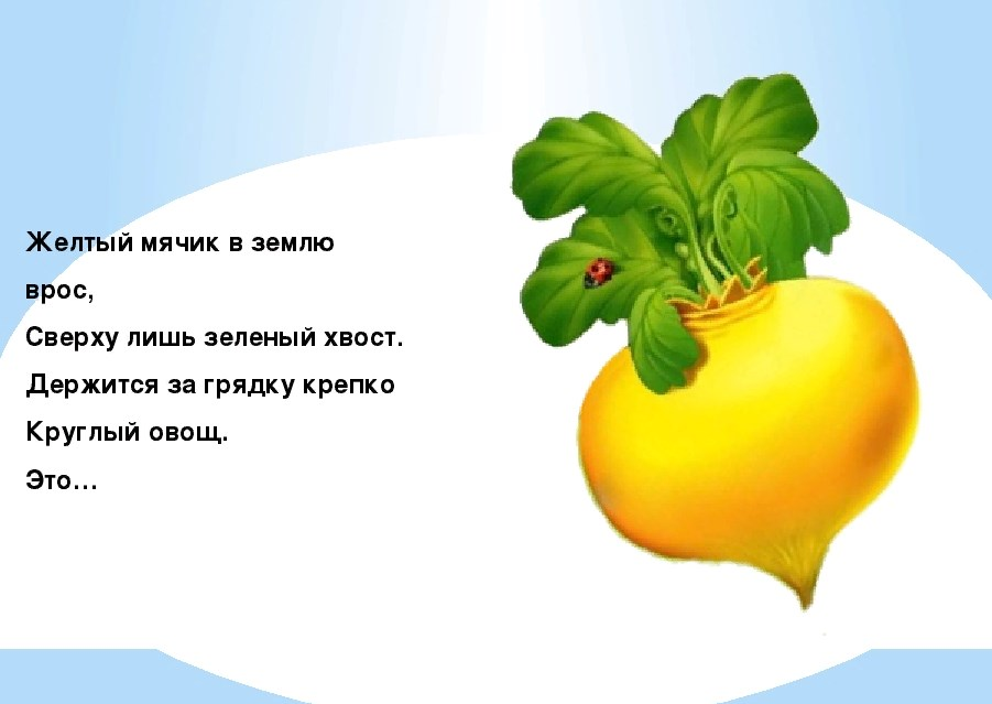 презентация загадки про овощи с картинками молочной железе