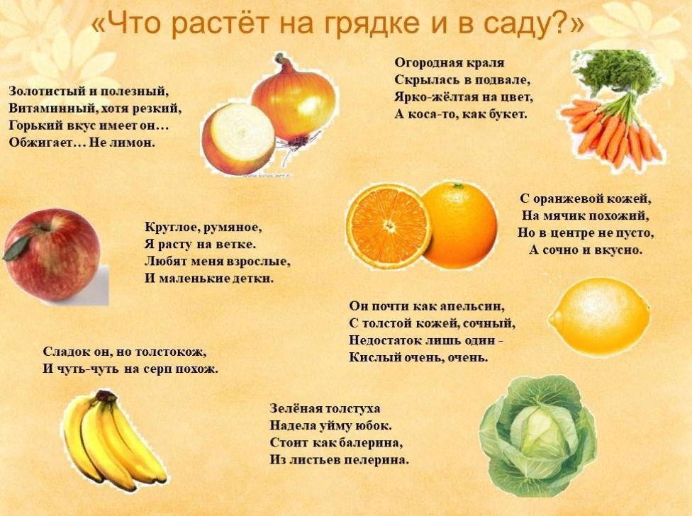 Картинки к загадках про фрукты и овощи