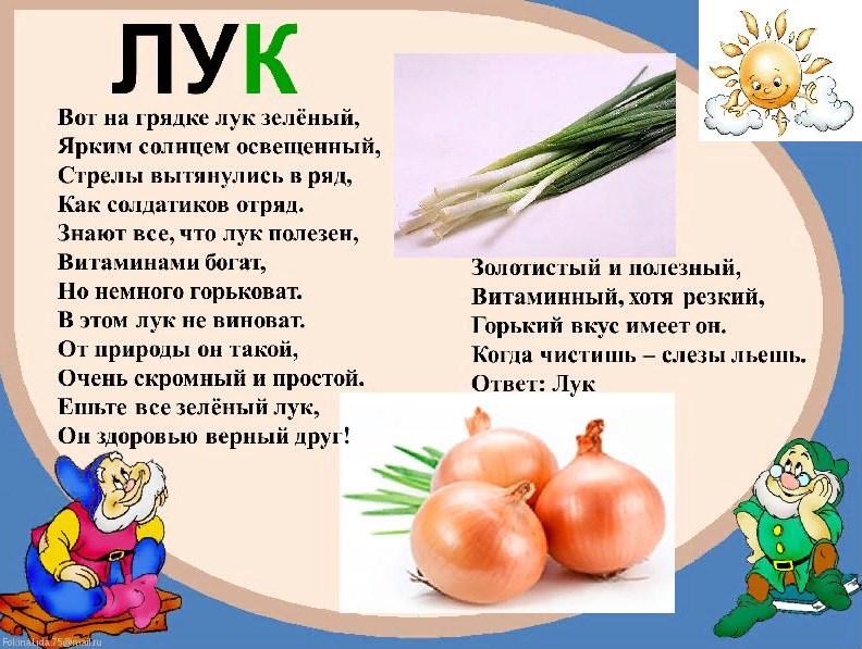презентация загадки про овощи с картинками функционал