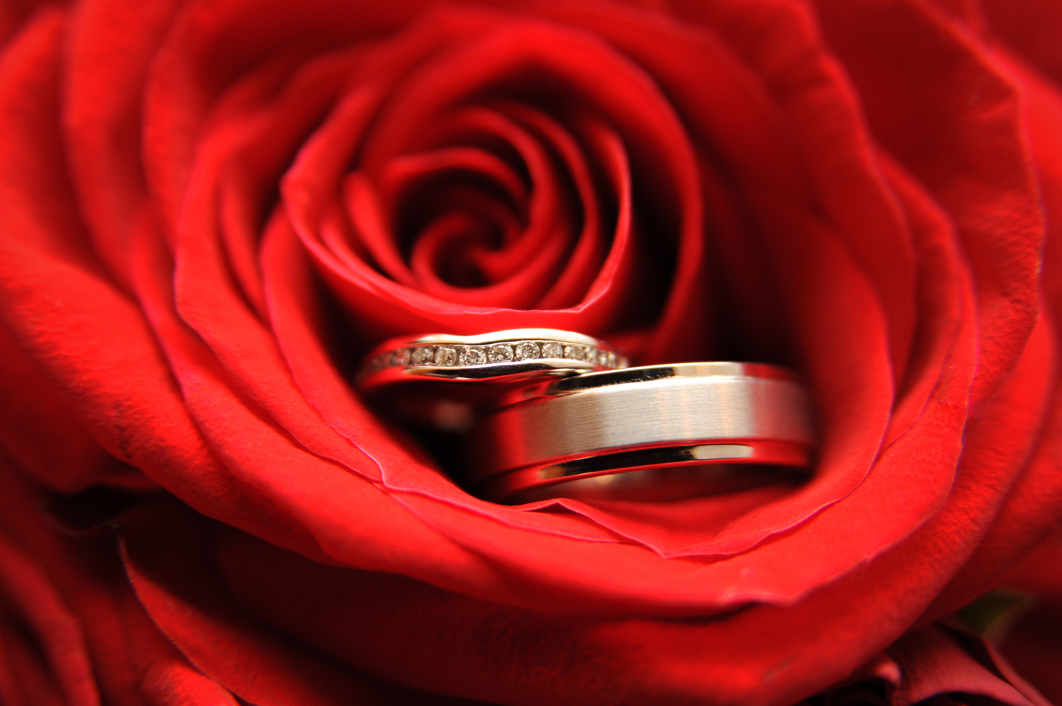 Открытки музыкальные свадьба, лет поздравление
