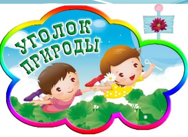 Картинки уголок детский сад