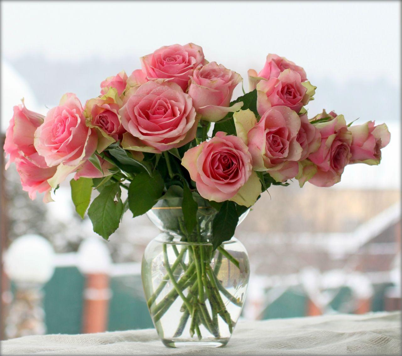 картинки розы в азе певец замедлил